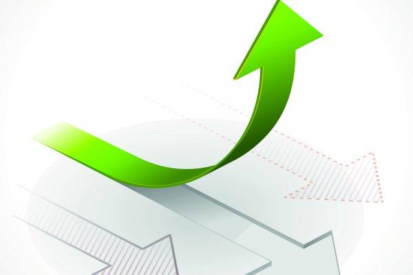 Evolución creciente del sector de ferretería y bricolaje